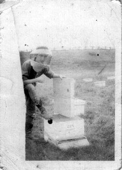 Paul-Émile Doré, apiculteur vers 1944